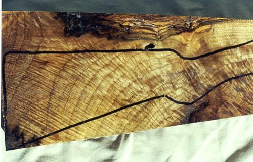 Gunstock wood by pete hiatt peterb a walnut sampler - Growing french walnuts for a profit ...